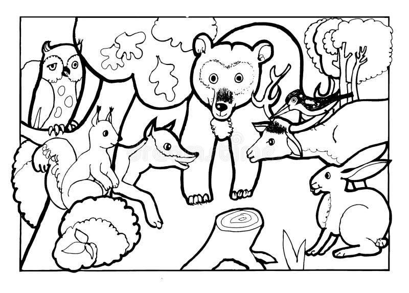 Животные леса, книжка-раскраска, страница книжка-раскраски, иллюстрацияверсии Â черно-белая стоковые изображения