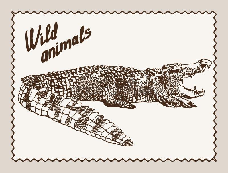 Download животные одичалые иллюстрация вектора. иллюстрации насчитывающей звероловство - 40580265