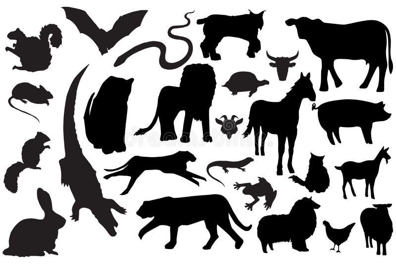 животные силуэты