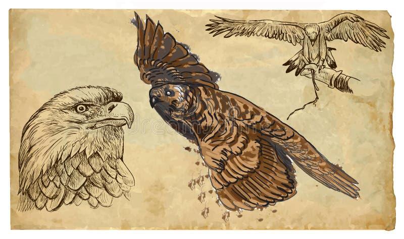 Животные, тема: ХИЩНЫЕ ПТИЦЫ - рука нарисованный пакет вектора иллюстрация вектора