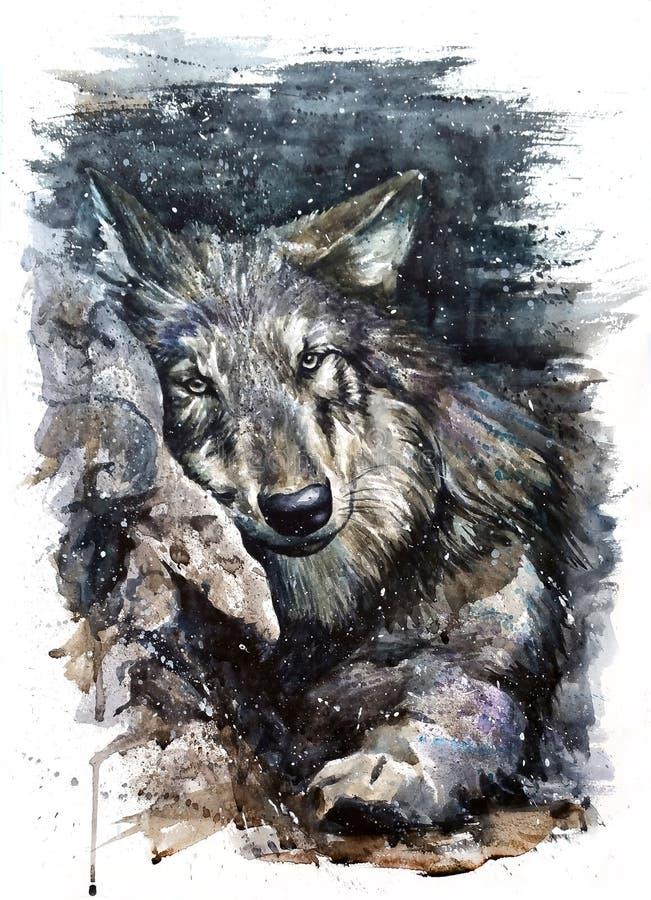 Животные хищника картины акварели волка дикие и свободные бесплатная иллюстрация