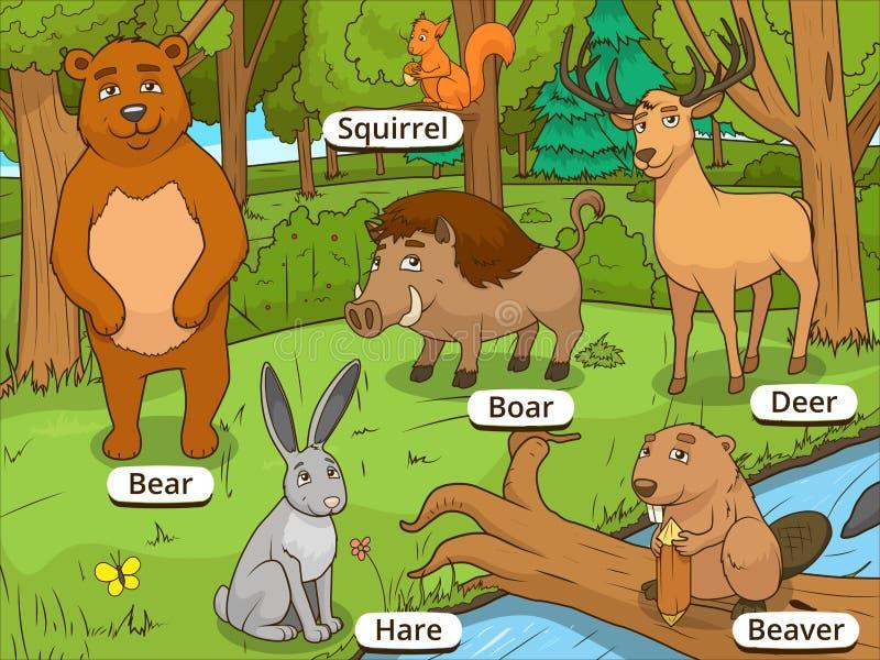 Животные шаржа леса с вектором имен иллюстрация вектора