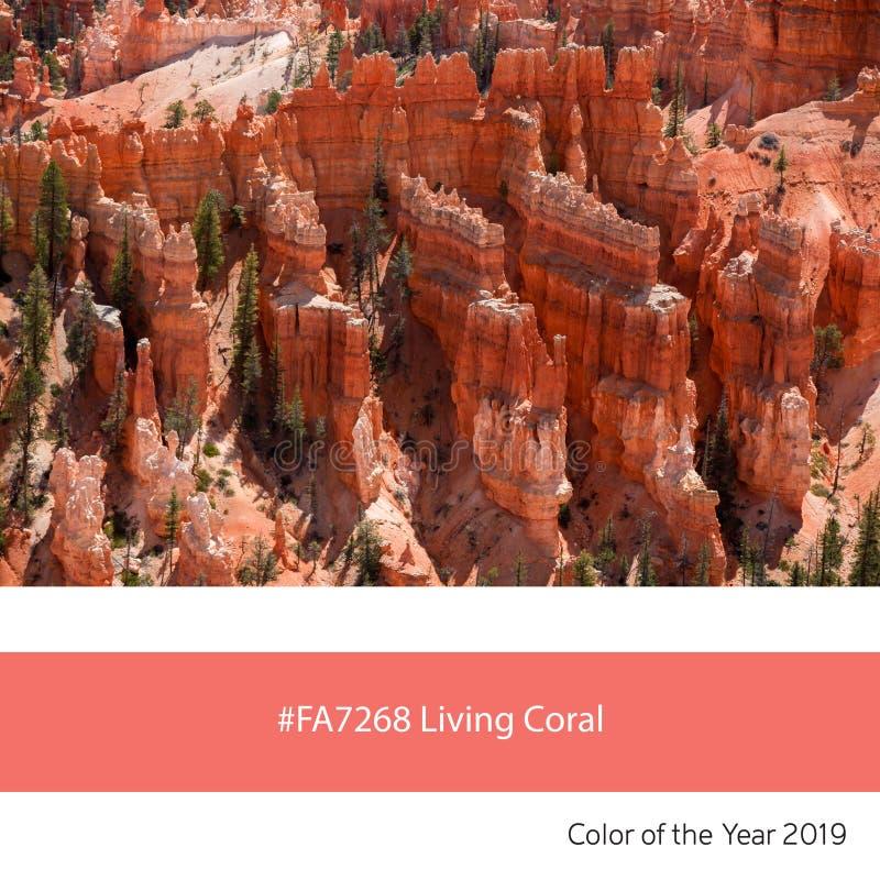 Живя цвет года, каньон коралла Bryce стоковая фотография