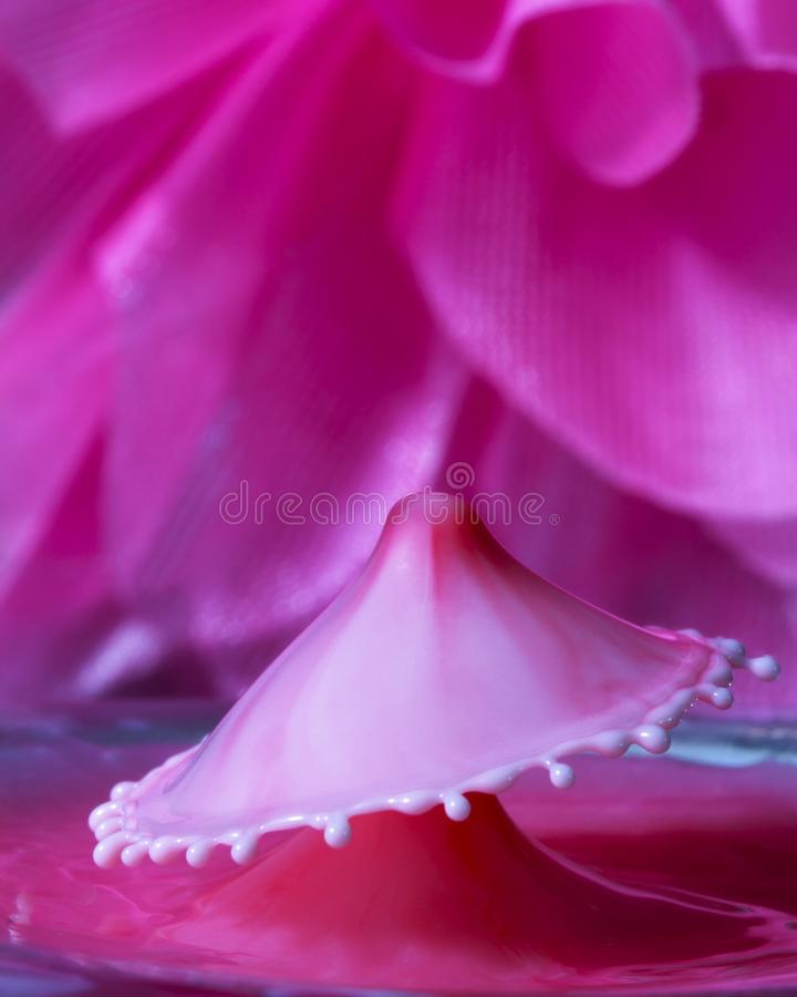 Жидкостное искусство падения в популярной форме зонтика против предпосылки цветка стоковые фото