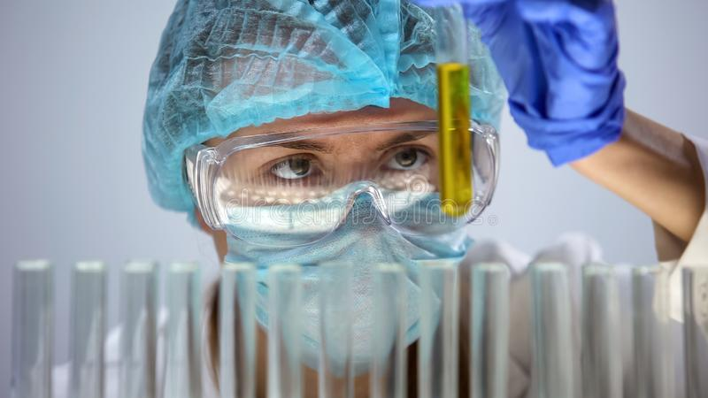 Жидкость пробирки удерживания ассистента лаборатории желтая, медицинский работник анализируя мочу стоковые фото