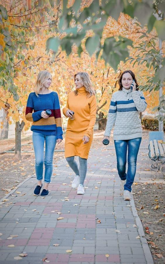 Жизнерадостные привлекательные 3 лучшего друга молодых женщин идя и имея потеха совместно снаружи стоковое фото