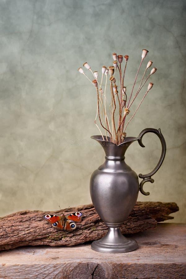 жизнь бабочки все еще стоковая фотография rf