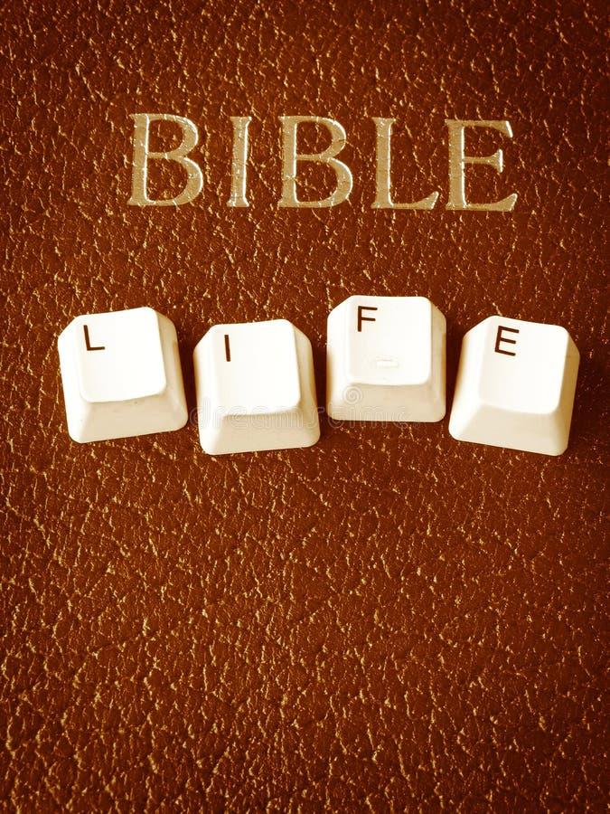жизнь библии стоковые изображения rf