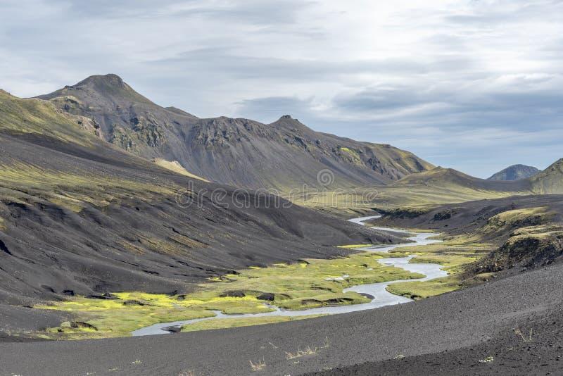 Жизнь в ландшафте лавы стоковая фотография rf