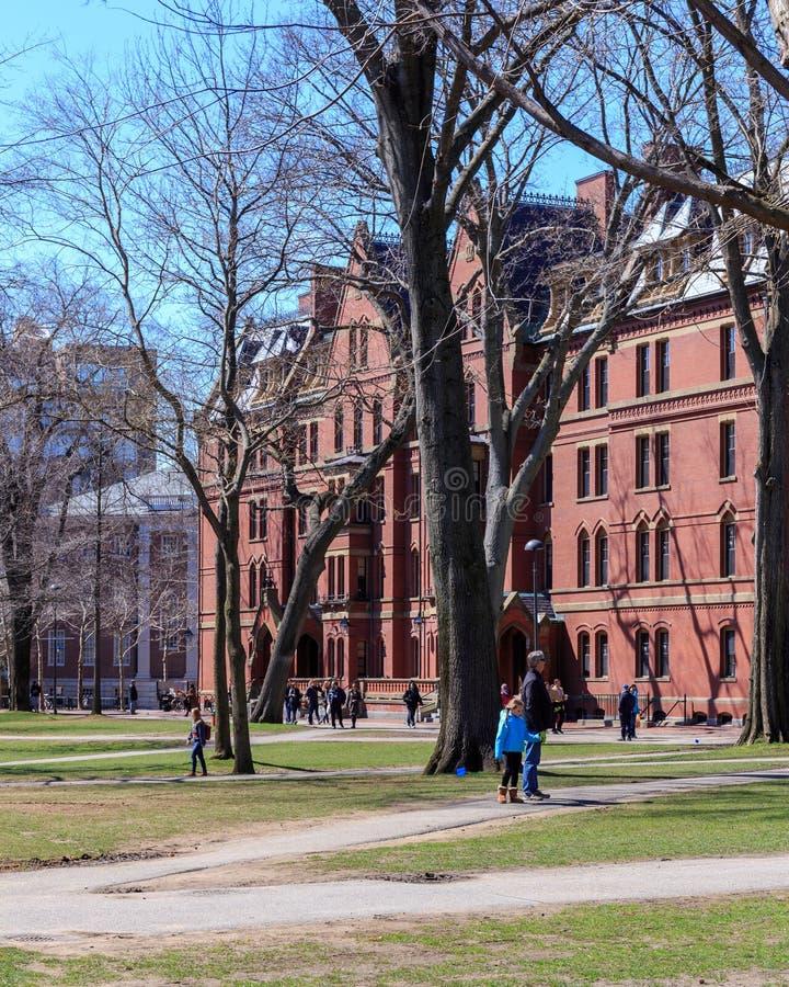 Жизнь кампуса Гарварда стоковое изображение rf