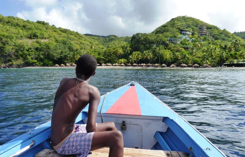 Жизнь карибского острова стоковое изображение rf
