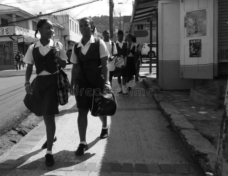 Жизнь карибского острова стоковая фотография