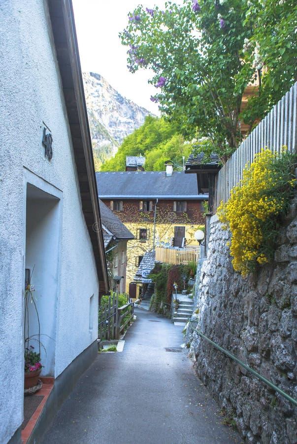 Жизнь, люди, природа в деревне Hallstatt в Австрии стоковое фото rf
