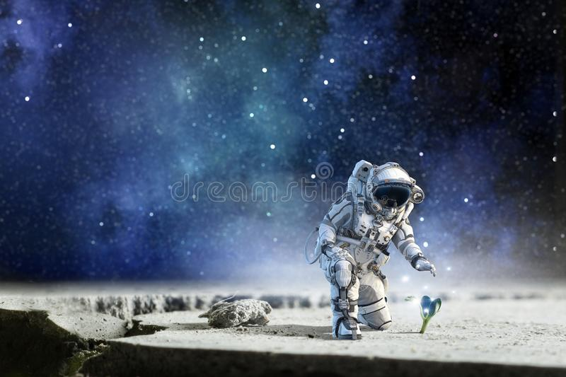 Жизнь на луне Мультимедиа стоковое фото rf