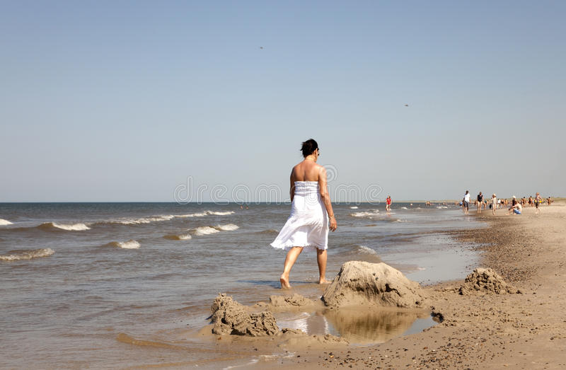 Жизнь на пляже стоковое изображение rf