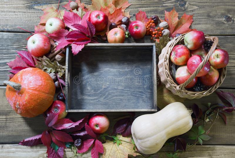 жизнь осени все еще Свежие плодоовощи падения, зрелые яблоки, тыква и деревянный поднос на таблице скопируйте космос стоковое изображение