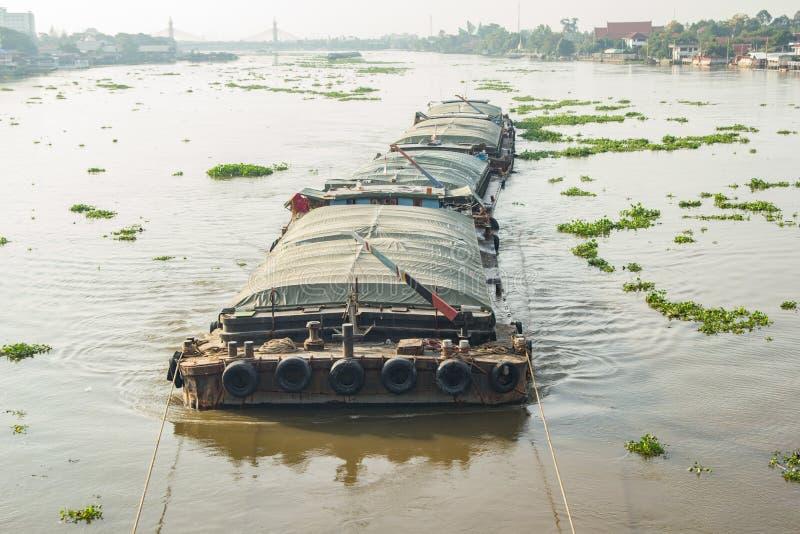 Жизнь реки стоковое изображение rf