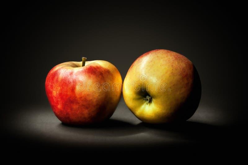 жизнь яблока все еще стоковое изображение