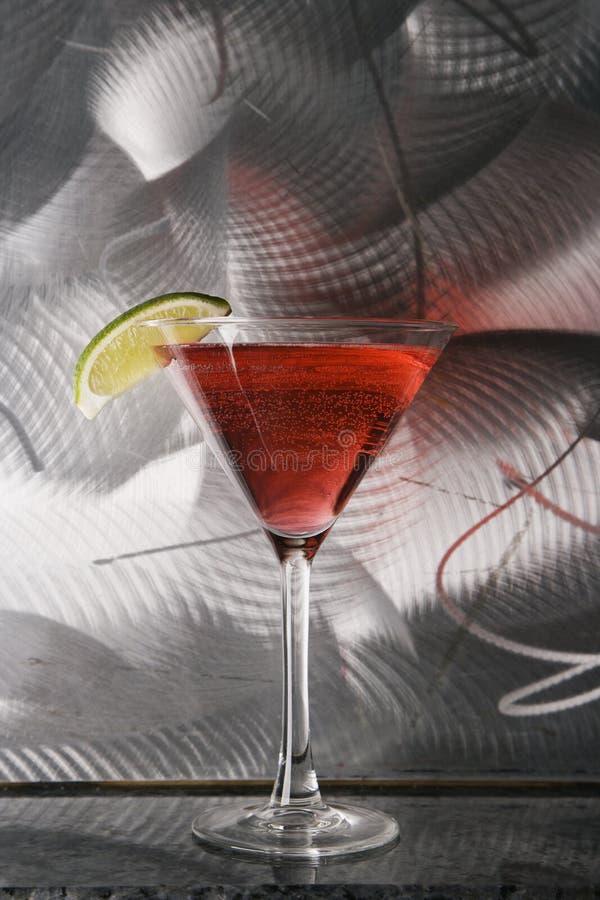 жизнь martini все еще стоковое изображение rf