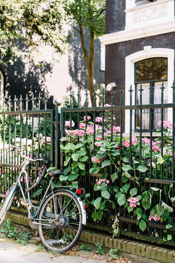 Жилой район в Амстердаме, Нидерланд стоковые фотографии rf