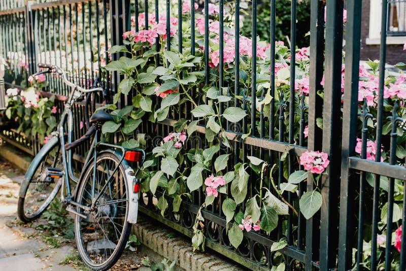 Жилой район в Амстердаме, Нидерланд стоковые фото
