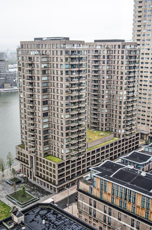 Жилые башни в Роттердаме стоковое изображение rf
