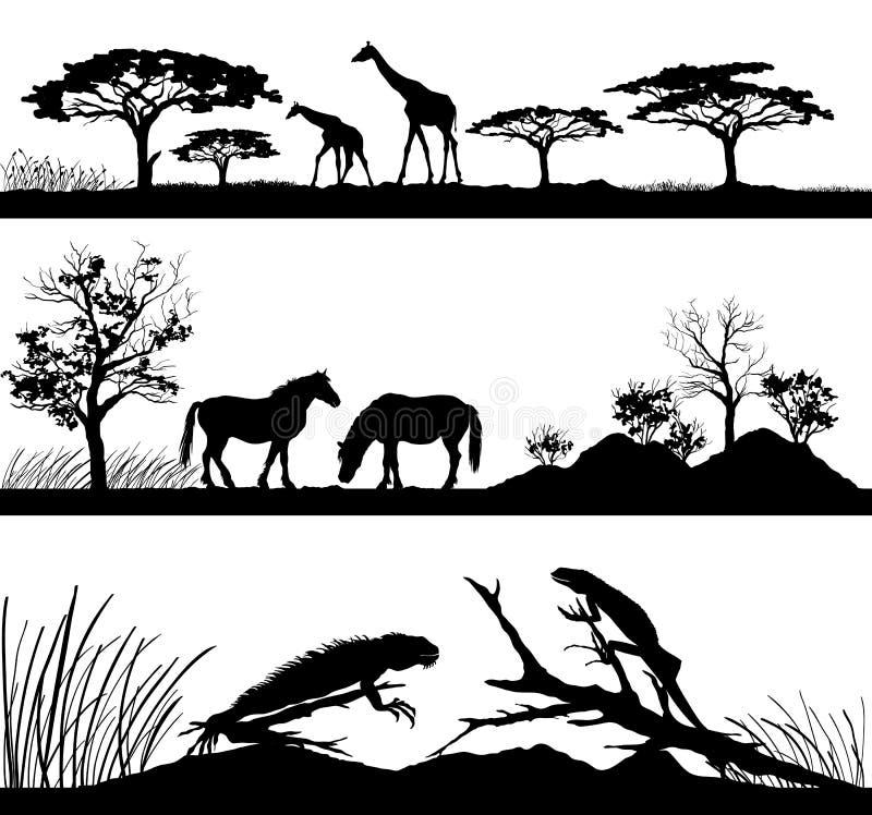 Жирафы диких животных, лошади, игуаны иллюстрация вектора