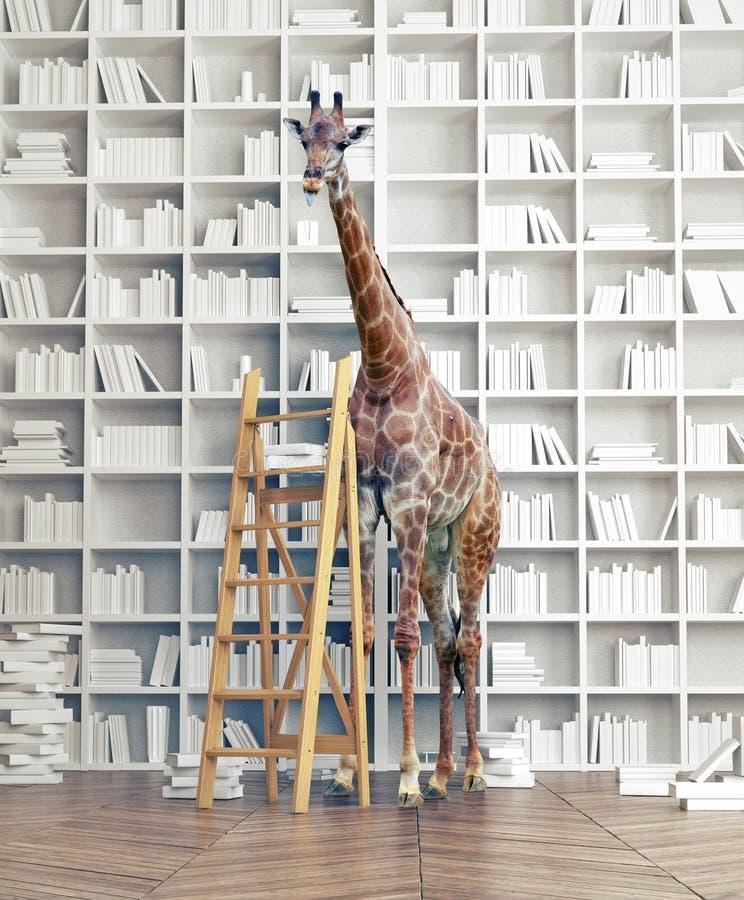 Жираф в иллюстрация штока