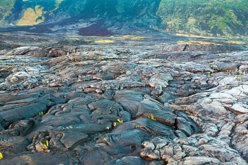 Жидкий охлаженный ландшафт лавы стоковое фото rf