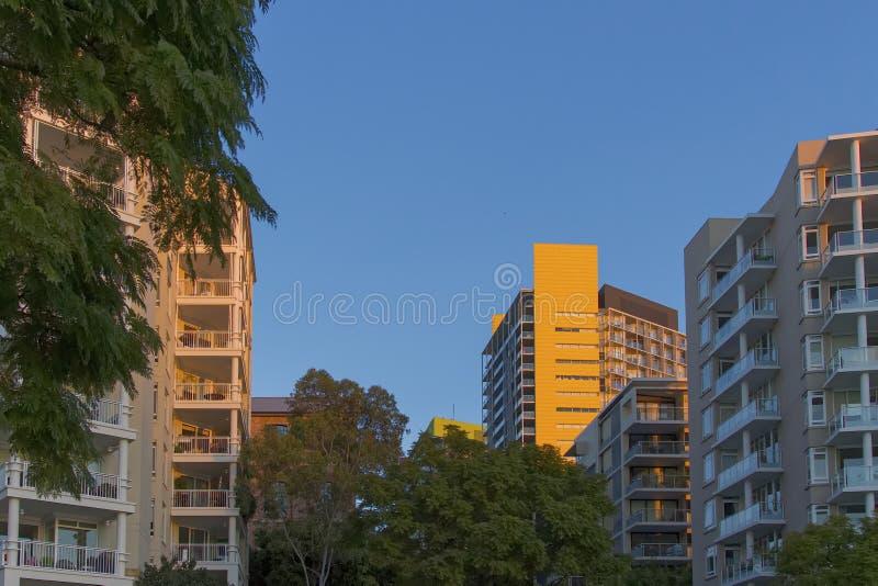 Жилые дома на Pyrmont в Сиднее, Австралии Квартира b стоковые фотографии rf