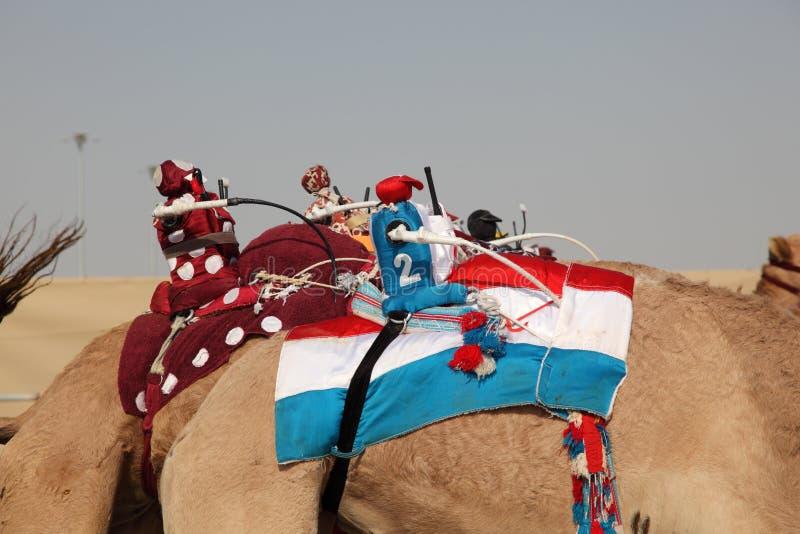 жокеи верблюдов участвуя в гонке робот стоковые изображения