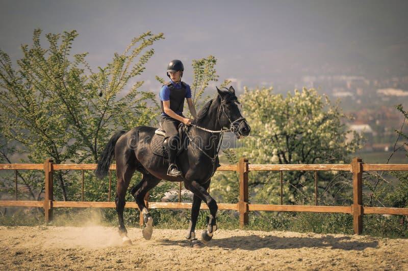 Жокей ехать быстрая лошадь племенника стоковое фото rf