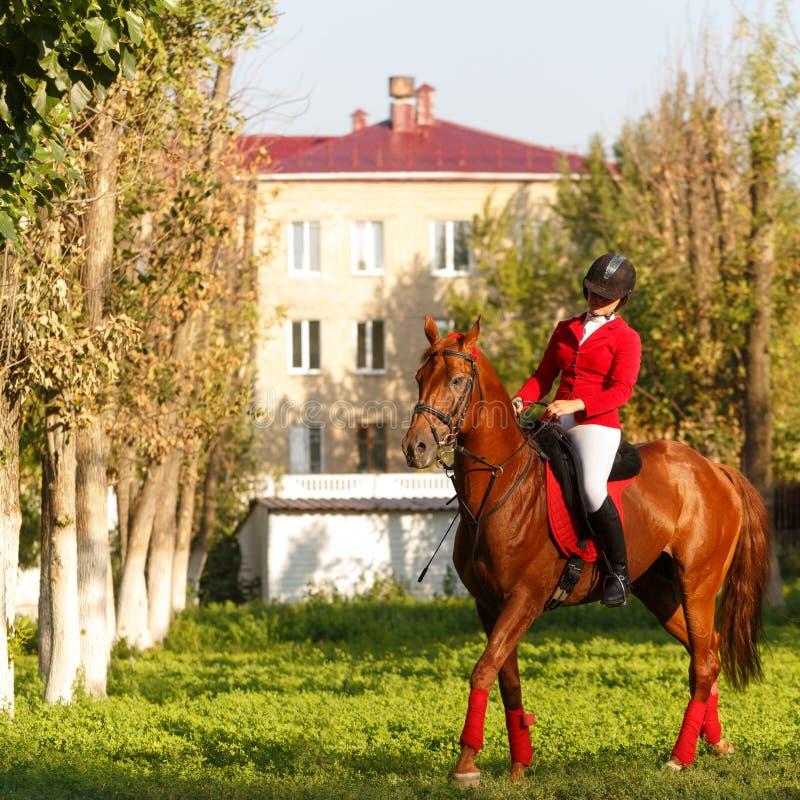 Жокей ехать походка лошади стоковые изображения rf