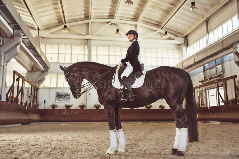 Жокей женщины с его лошадью стоковые изображения