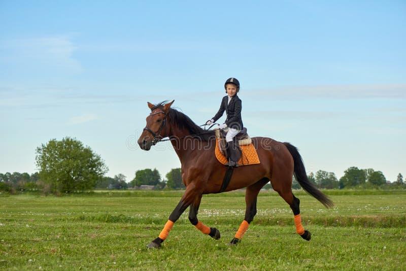 жокей маленькой девочки ехать лошадь через страну в профессиональном обмундировании стоковое фото