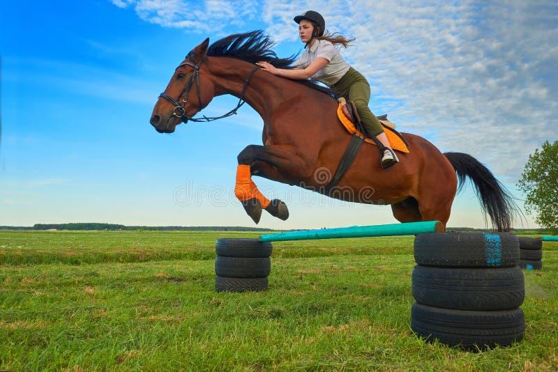 Жокей маленькой девочки и ее шлямбур лошади стоковая фотография rf