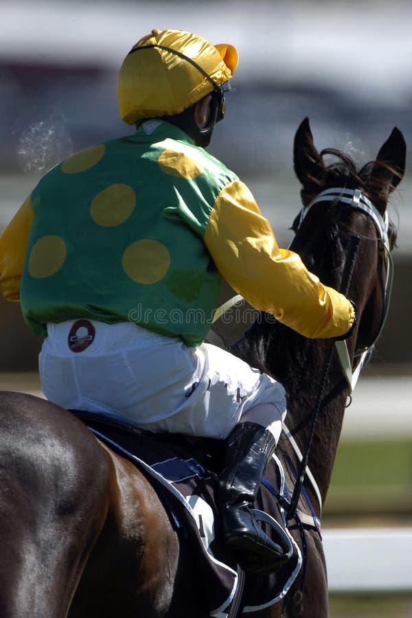 жокей 01 лошади стоковые фотографии rf
