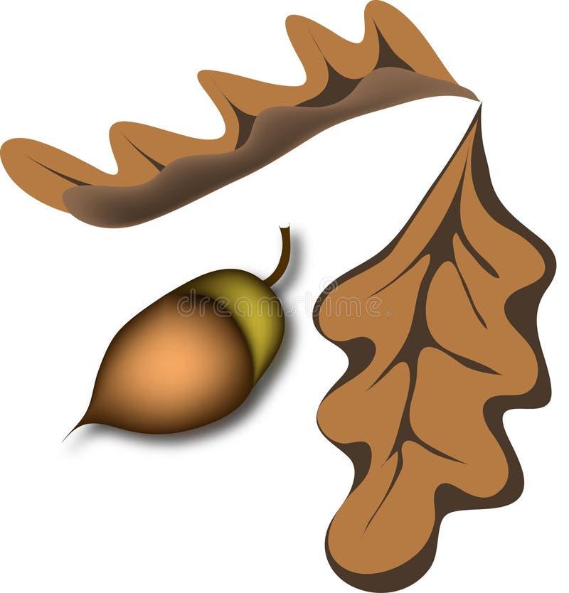 жолудь выходит дуб иллюстрация вектора