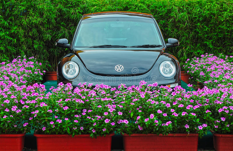 жук новый volkswagen стоковое фото rf