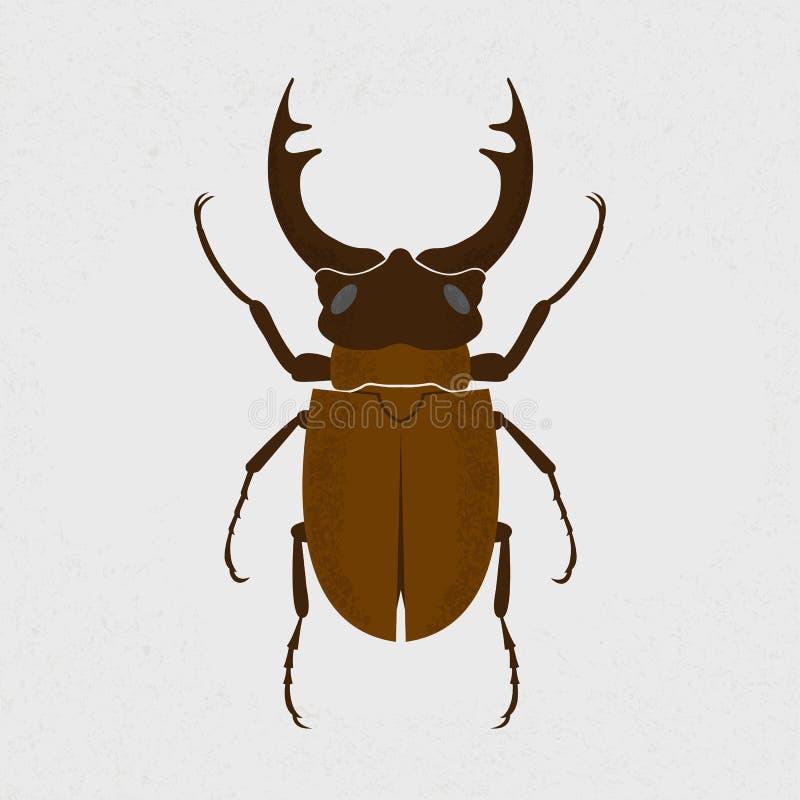 Жук рогача, самый большой жук иллюстрация вектора