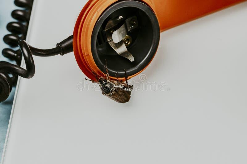 Жук-чефер ретро телефон Он выходит диктора концепция телефона слушая стоковое изображение rf