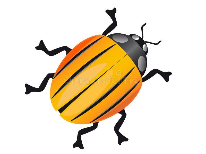 жук colorado бесплатная иллюстрация
