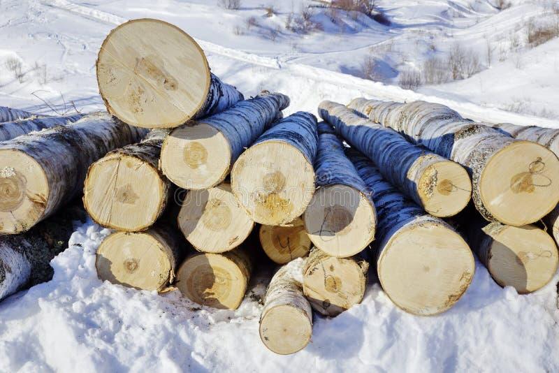 журналы высекать древесину береза вносит дальше снег в журнал Швырок стоковое фото rf