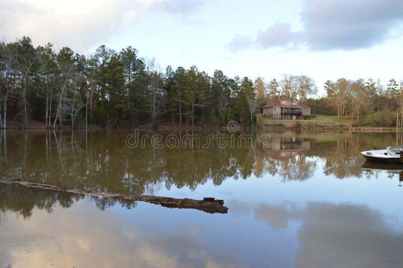 Журнал плавая на поверхность озера стоковая фотография rf