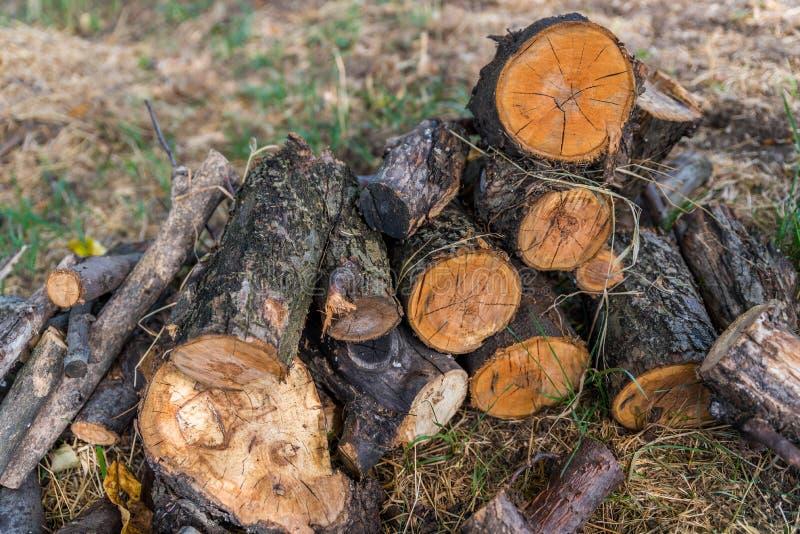 Download Журналы дерева стоковое фото. изображение насчитывающей концы - 97441894