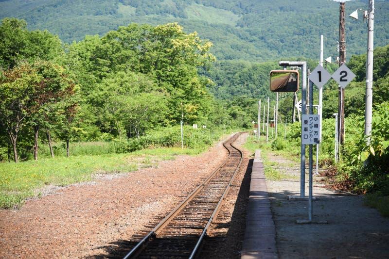 Ждать мой поезд для того чтобы прийти стоковое фото rf