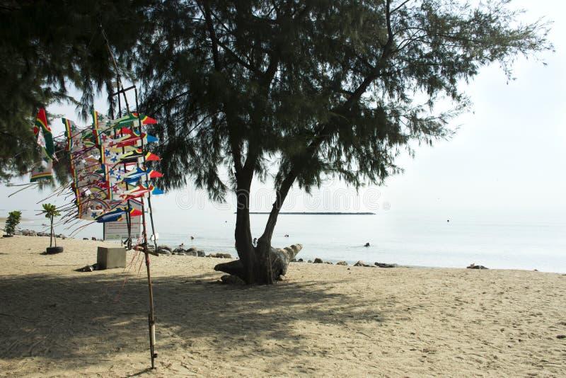 Забавляйтесь плоское сделанное от людей путешественников пены для продажи на пляже стоковые изображения rf
