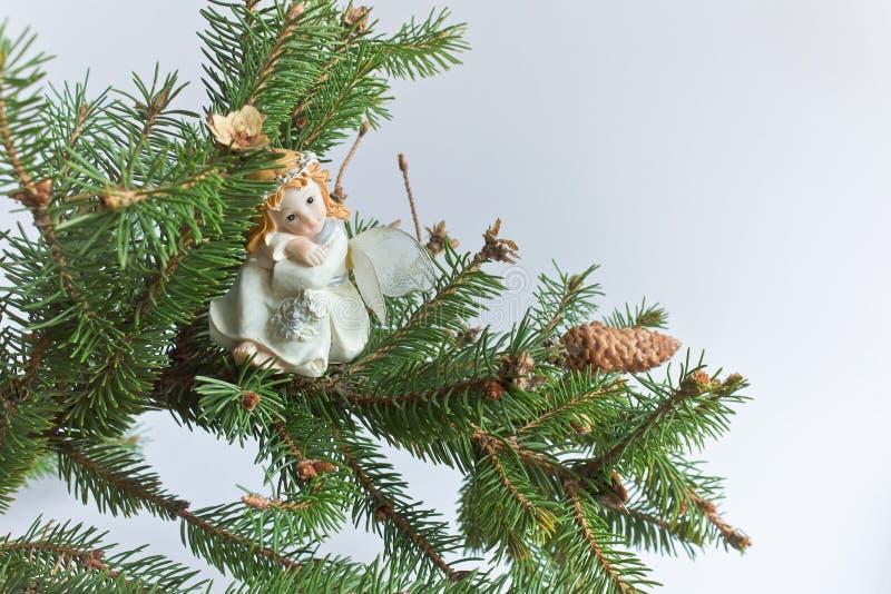Забавляйтесь фея на елевой ветви на светлой предпосылке стоковая фотография rf