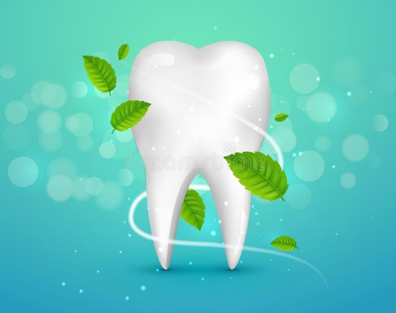 Забеливающ объявления зуба, с листьями мяты на зеленой предпосылке Зеленые листья мяты очищают свежую концепцию Здоровье зубов иллюстрация штока