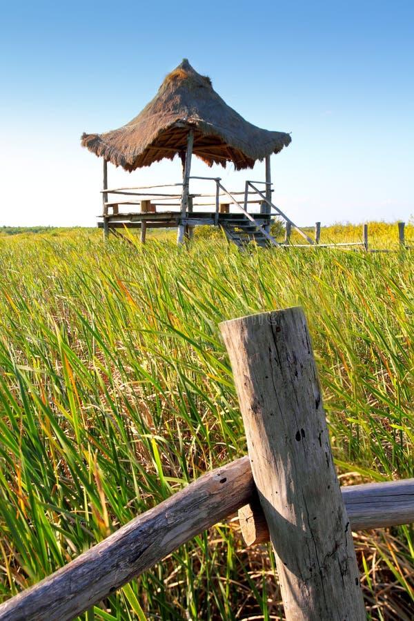 Download заболоченные места тростника Palapa мангровы хаты Стоковое Фото - изображение насчитывающей напольно, gazebo: 18386672